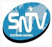 Watch Somali National Television Live TV from Somalia