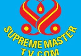 Watch Supreme Master TV Live TV from Vietnam